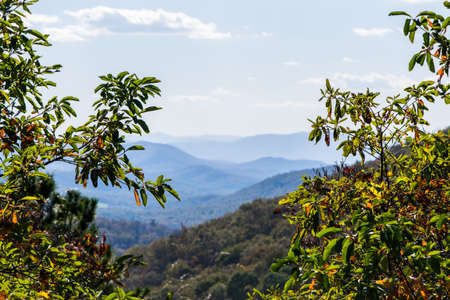 Skyline of The Blue Ridge Mountains in Virginia at Shenandoah National Park During High Fall Color Stock Photo