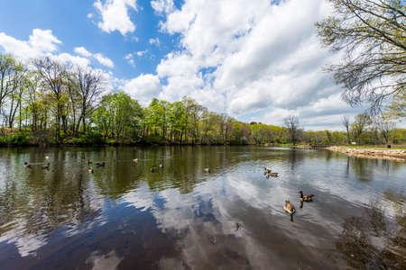 뉴 헤이 븐 코네티컷에있는 Edgewood 주립 공원 스톡 콘텐츠