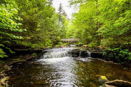 펜실베니아에있는 Poconos의 Ricketts Glen 주립 공원의 아름다운 폭포