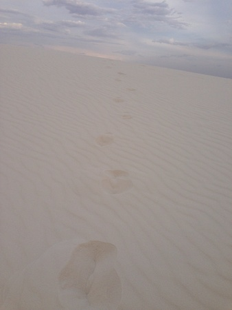 white sands national monument: Footprints at White Sands national monument in New Mexico. Stock Photo