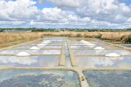 salt marsh: Saline guerande Stock Photo