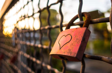 Rusty Red Love Padlock on a Wire Fence Fidelity Promise