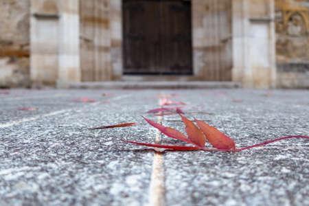 Purple autumn leaf in front of stony church gate Archivio Fotografico