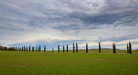 Treelined dirt road through lush green farmland below dramatic sky