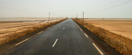 Road through Senegalese Nationial Park in Murky Daylight Archivio Fotografico