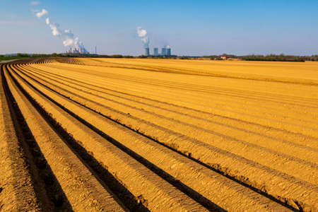Asparagus agrigultural field row upon row in front of power plant Archivio Fotografico