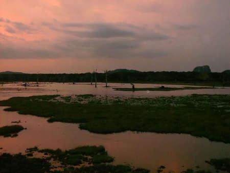 srilanka: Sunset to Yala national park in Sri-Lanka
