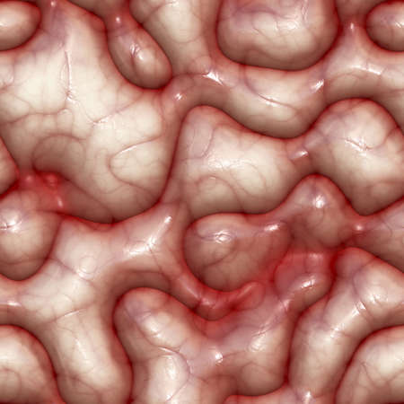entrails: Seamless brain texture. Realistic material of the human brain.
