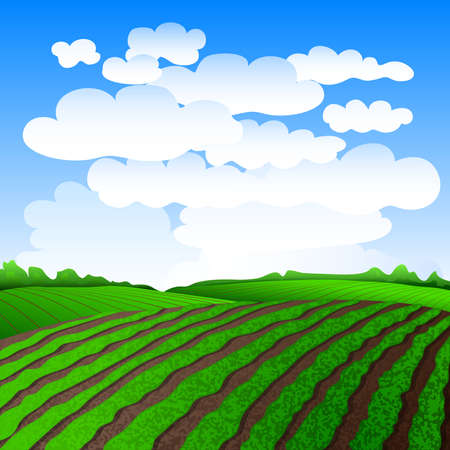 Rural landscape with green fields. Vector illustration EPS 10.