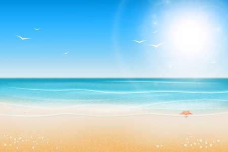 Tropical beach. Sandy beach under the bright sun. Seashells and starfish on the beach near the sea. Marine background.