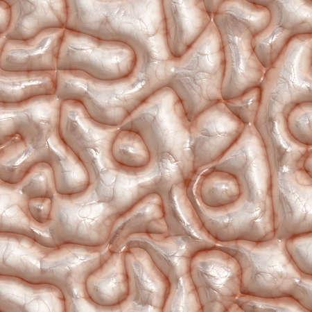 flesh surgery: Brain surface. Seamless brain texture. Realistic material of the human brain.
