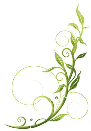 bamboo border: Green bamboo tendril, vector