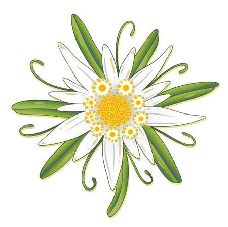 m�nchen: Kleurrijke Edelweiss, Oktoberfest