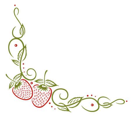 cirrus: Colorful strawberries vines, vector set Illustration