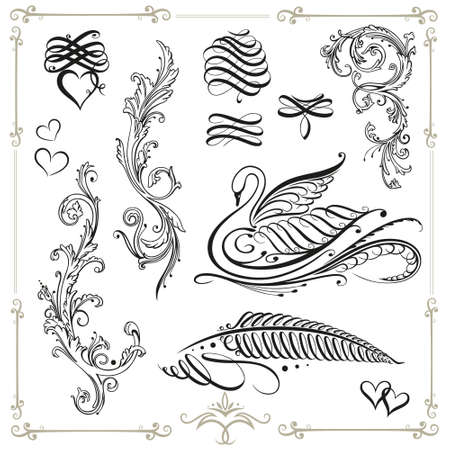 Vector calligraphy set, vintage, black swan Vector