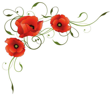 poppies: Elegant tendril with poppies