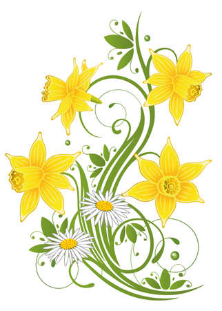 Colorful spring, daffodils and daisy