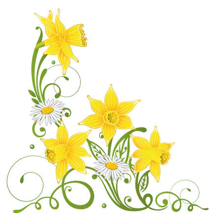 Colorful spring, daffodils and daisy Vector