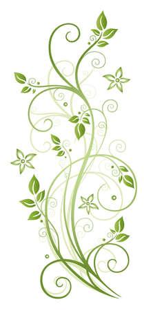 tendrils: Green tendril, spring Illustration