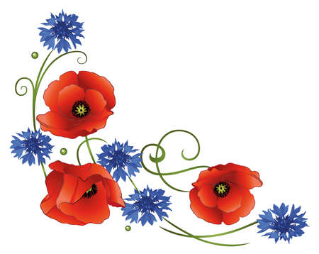 poppy flowers: Tendril with poppies and cornflowers