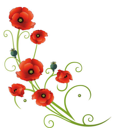 Tendril with poppies, green and red Illustration