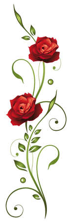 Red roses with leaves Illustration
