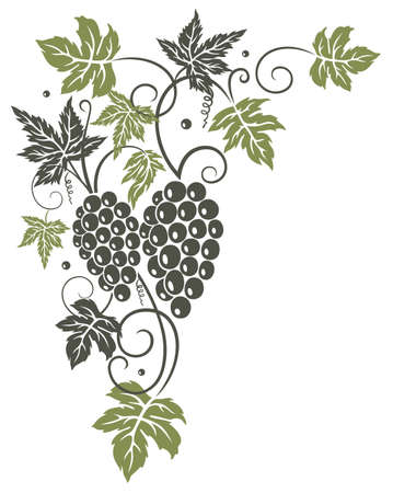 grape leaf: Vine leaves with grapes, border