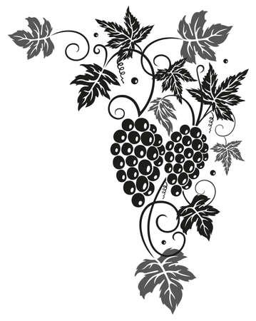 wijnbladeren: Wijnbladeren met druiven