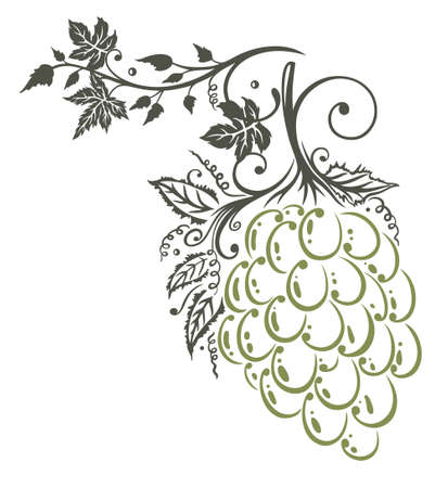 vine and leaves of vine: Vine leaves with grapes, border