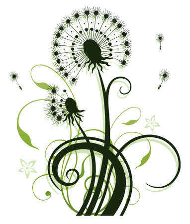 dandelion flower: Colorful spring flowers, dandelion, floral element  Illustration