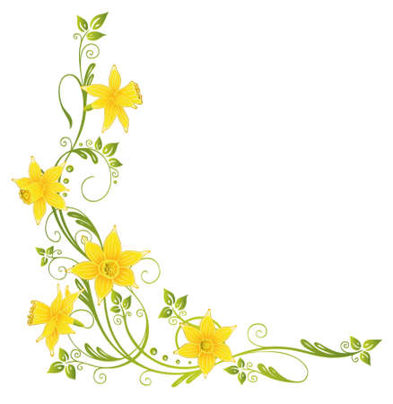 Colorful daffodils decoration, easter and spring vector element
