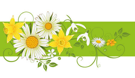 Colorful spring and easter decoration  Vector