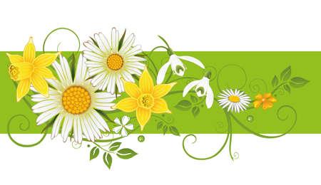 marguerite: Colorful spring and easter decoration  Illustration