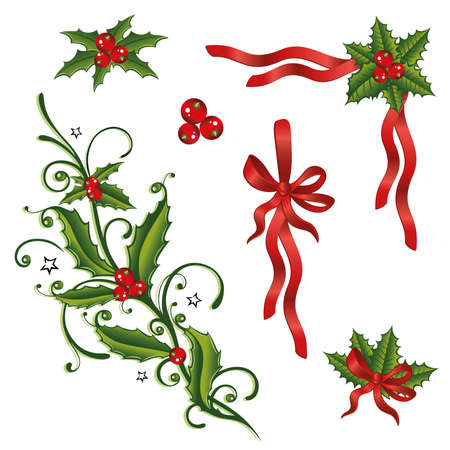 Colorful christmas design elements, holly and loops  Vector