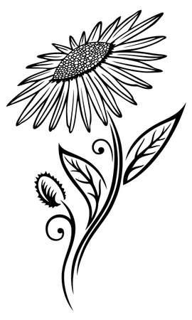 Black sunflower, illustration, floral element