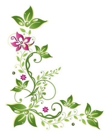 Bunte grün und rosa Ranke mit Blumen Illustration