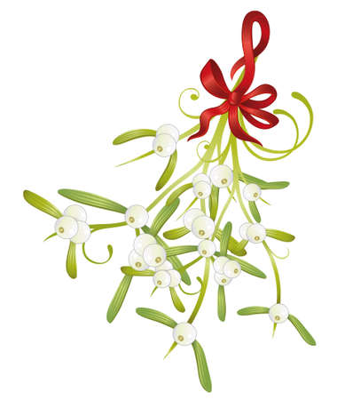 Colorful mistletoe with red loop, christmas time Vector