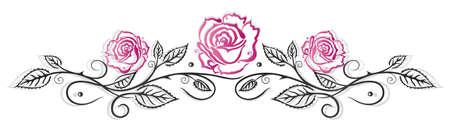 cirrus: Roses decoration, filigree leaves cirrus