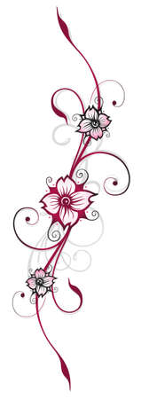 cirrus: Floral element, cherry blossoms, spring time Illustration