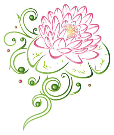Colorful and filigree lotus flower, pink and green