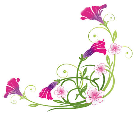 petunia: Colorful petunias, summer flowers, pink Illustration