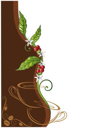 planta de cafe: Planta de café de colores y tazas de café, café de fondo