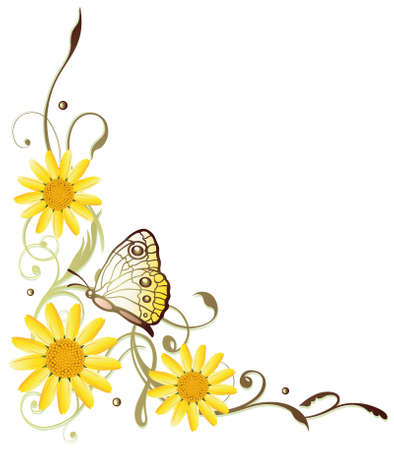 marguerite: Colorful summer flowers with yellow butterfly