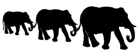 black family: Elephants family in africa, black silhouette