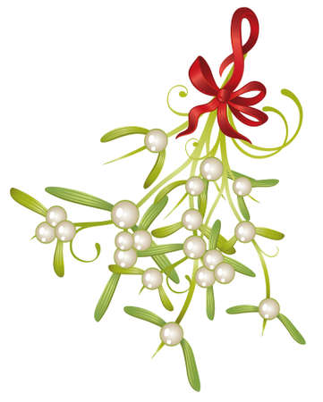 Weihnachtsdekoration, Mistel mit Beeren