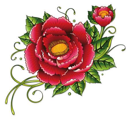 Bunte Pfingstrose, Sommer Blüten
