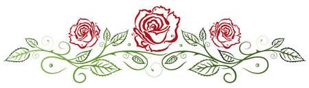 borde de flores: Rosas rojas con hojas de vid de colores