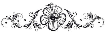 flower drawings: Filigree hibiscus decoration, black Illustration