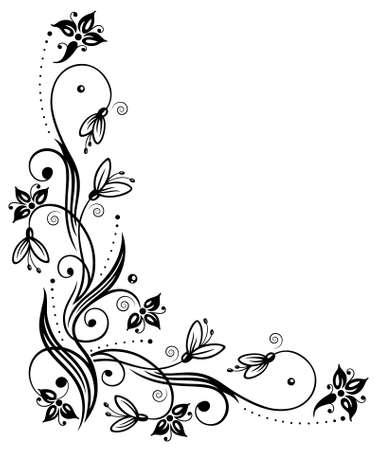 blooms: Snowdrops, springtime flowers