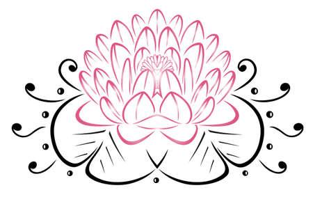 rosa negra: Filigrana de la flor de loto, color de rosa floral.